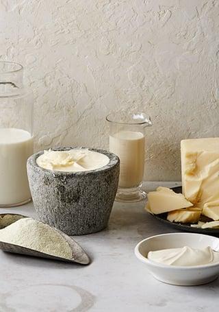 all-dairy2.jpg